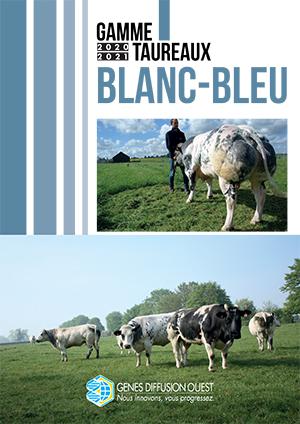 Classification Blanc Bleu Belge Ouest